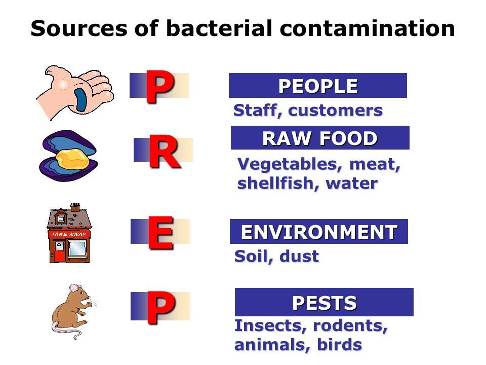 Sources of bacterial contamination