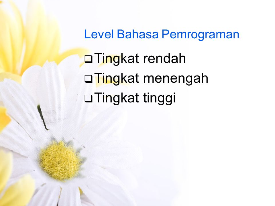 Level Bahasa Pemrograman