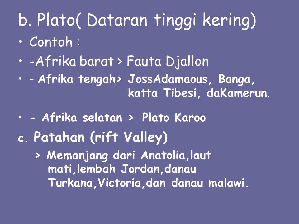 b. Plato( Dataran tinggi kering)