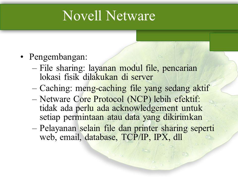 Novell Netware Pengembangan: