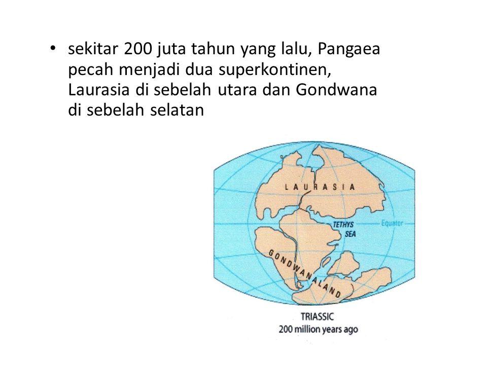sekitar 200 juta tahun yang lalu, Pangaea pecah menjadi dua superkontinen, Laurasia di sebelah utara dan Gondwana di sebelah selatan