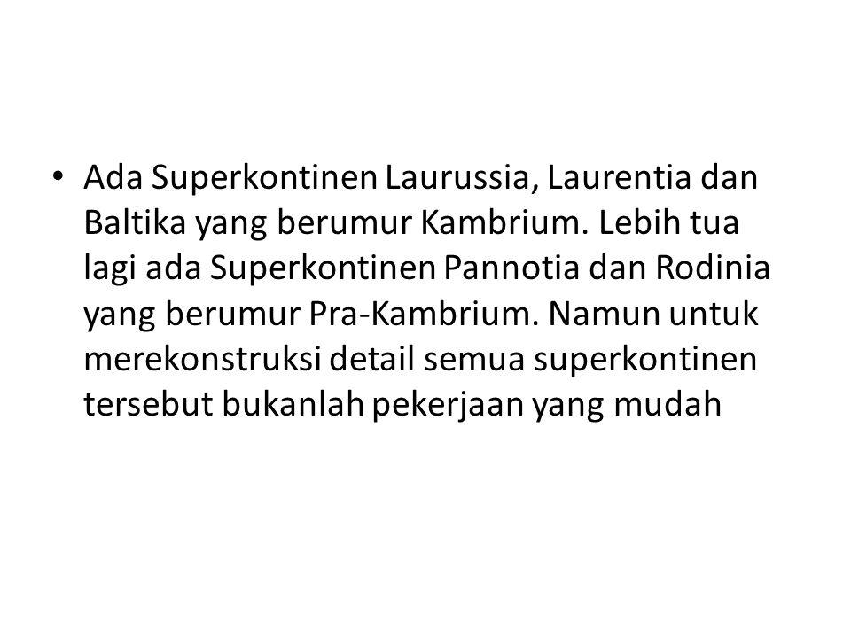 Ada Superkontinen Laurussia, Laurentia dan Baltika yang berumur Kambrium.