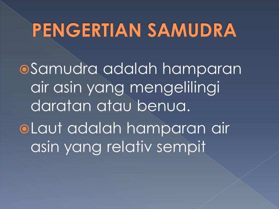 PENGERTIAN SAMUDRA Samudra adalah hamparan air asin yang mengelilingi daratan atau benua.