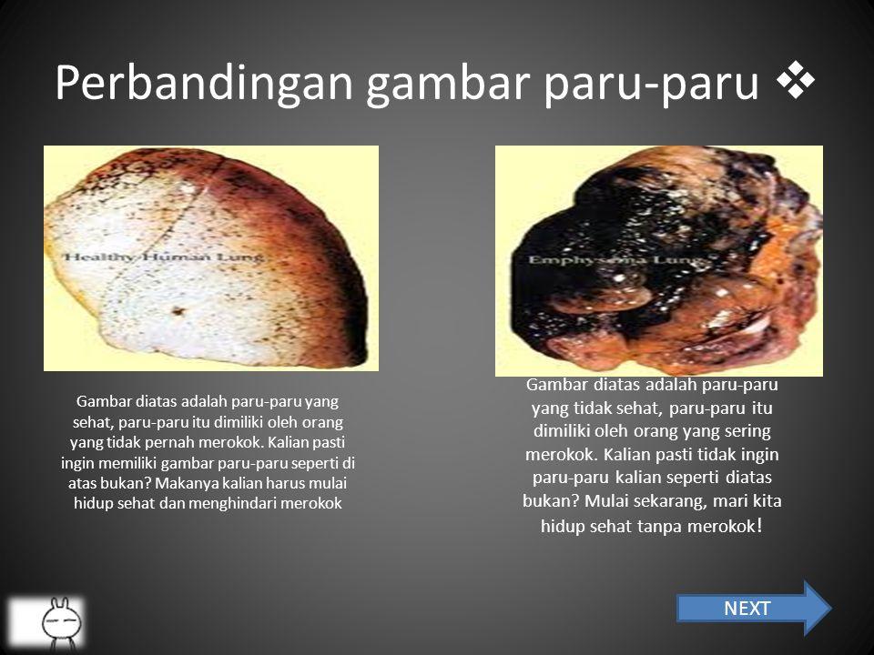 Perbandingan gambar paru-paru 