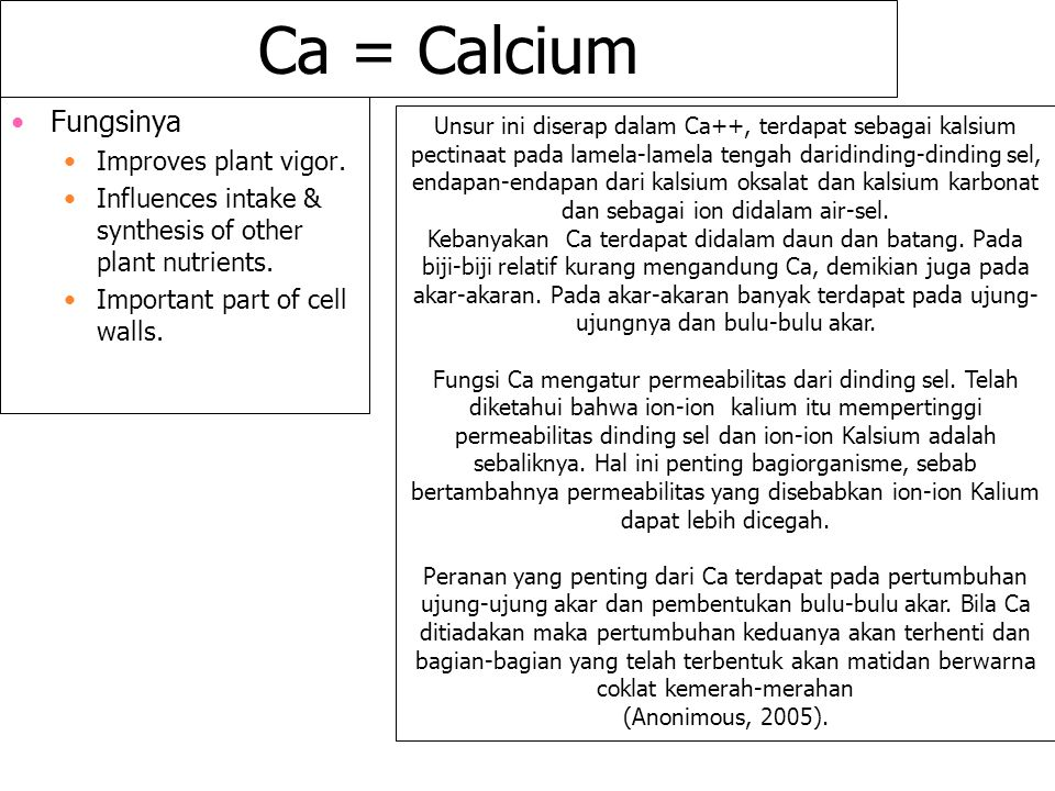 Ca = Calcium Fungsinya Improves plant vigor.