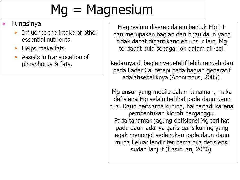 Magnesium diserap dalam bentuk Mg++