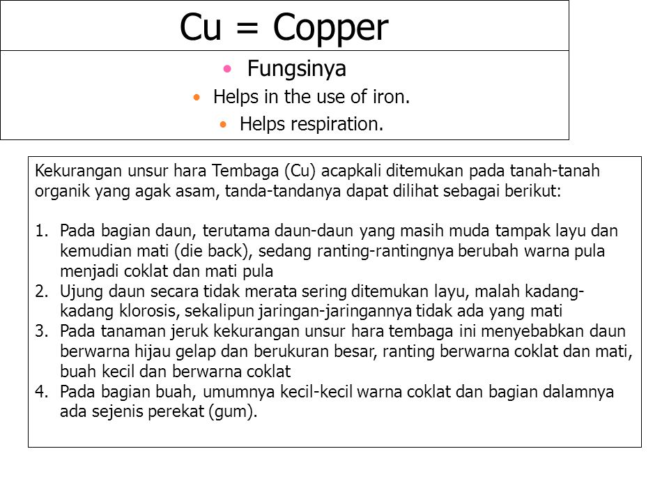 Cu = Copper Fungsinya Helps in the use of iron. Helps respiration.