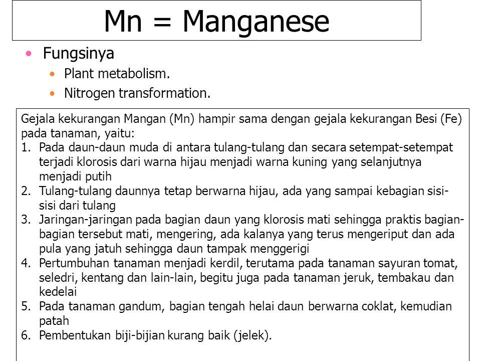 Mn = Manganese Fungsinya Plant metabolism. Nitrogen transformation.
