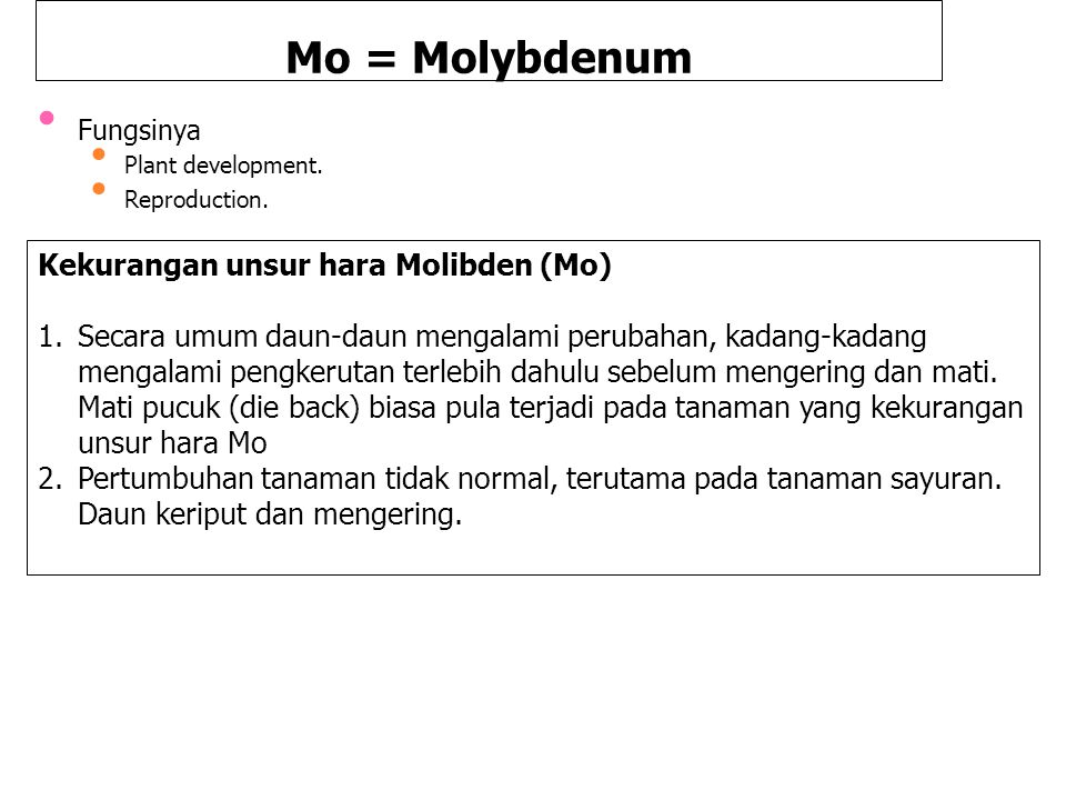 Mo = Molybdenum Fungsinya Plant development. Reproduction.