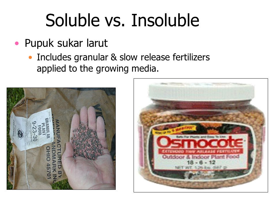 Soluble vs. Insoluble Pupuk sukar larut
