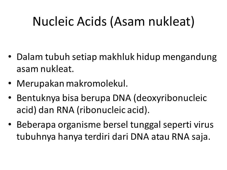 Nucleic Acids (Asam nukleat)