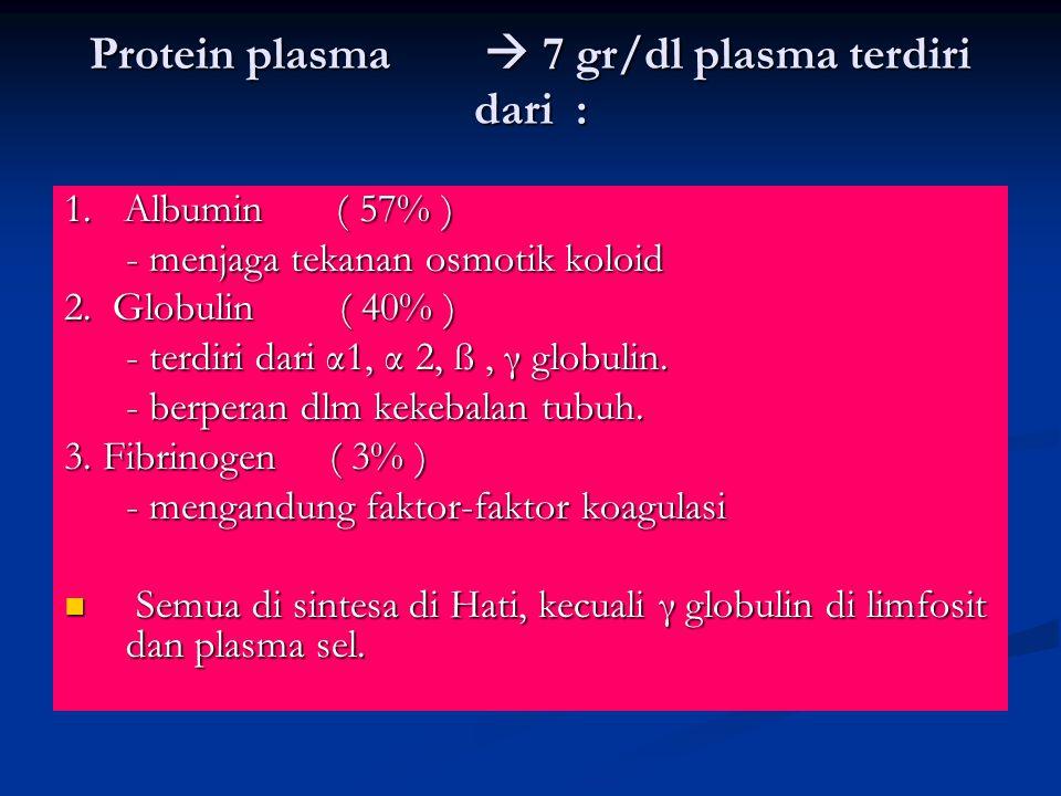 Protein plasma  7 gr/dl plasma terdiri dari :