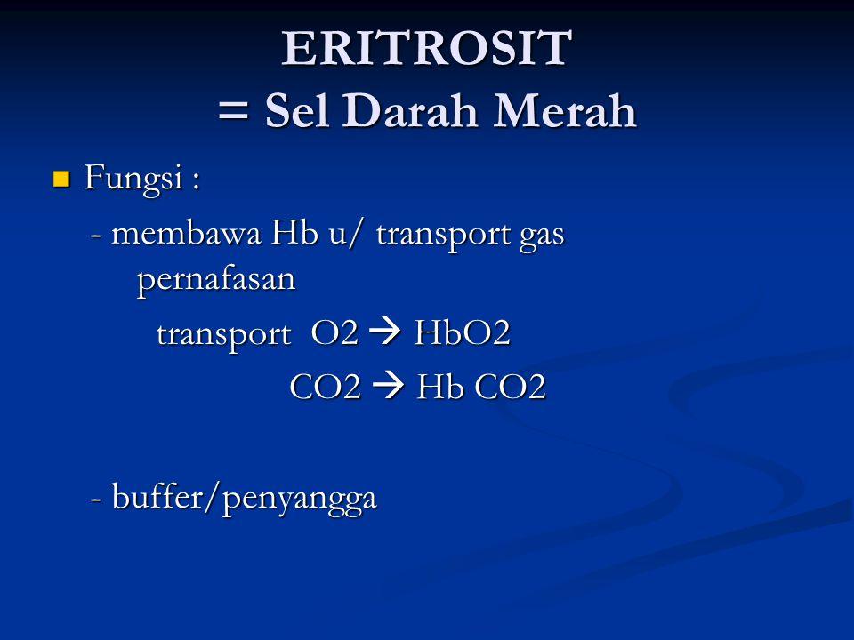 ERITROSIT = Sel Darah Merah