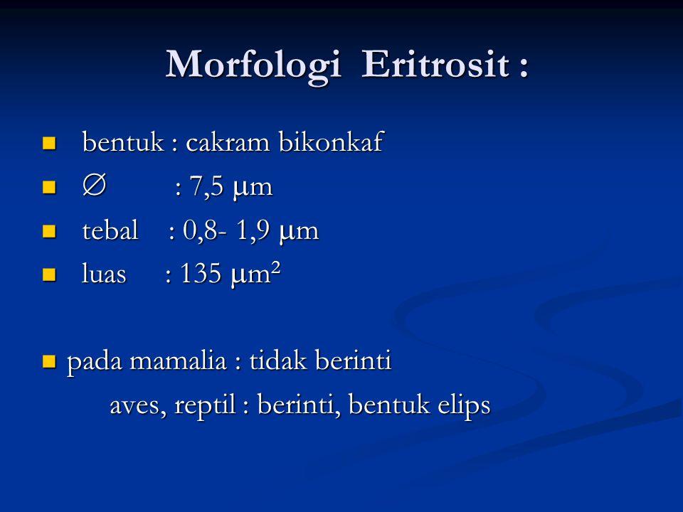 Morfologi Eritrosit : bentuk : cakram bikonkaf  : 7,5 m