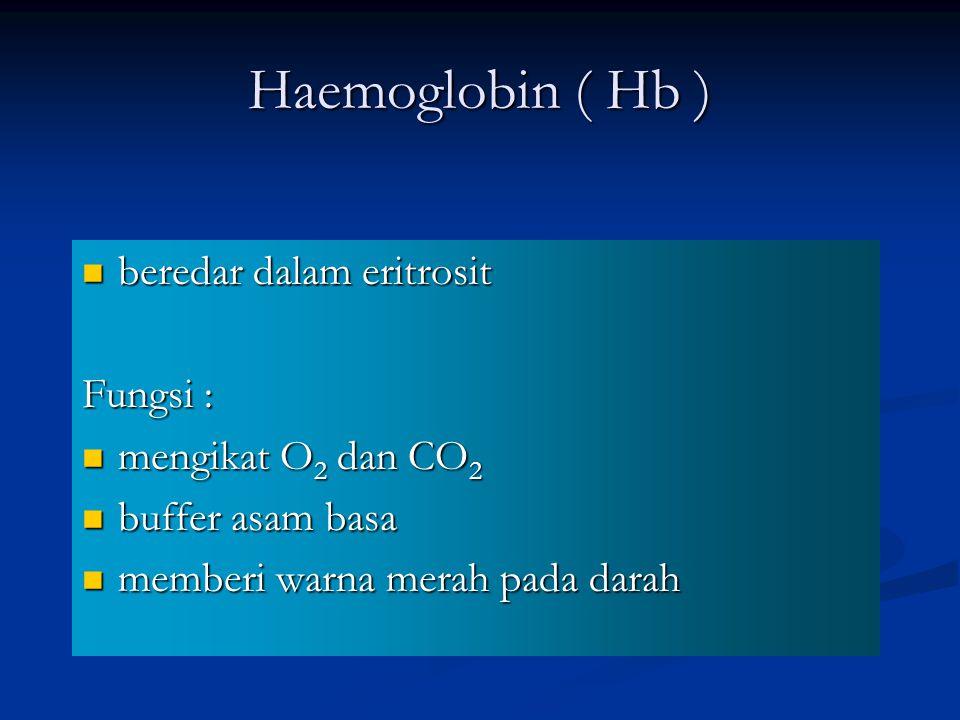Haemoglobin ( Hb ) beredar dalam eritrosit Fungsi :