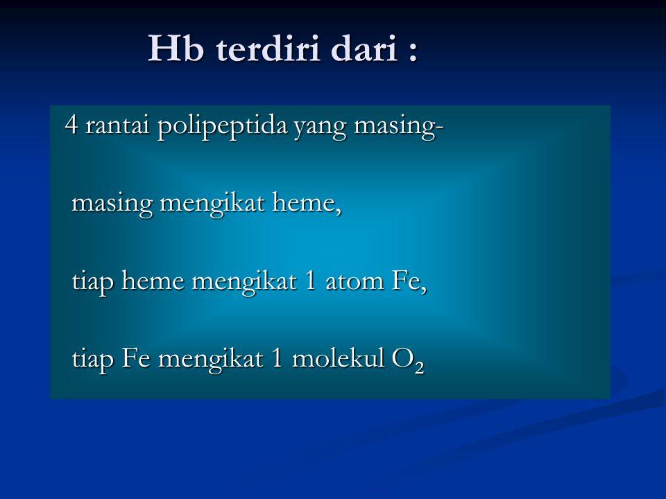 Hb terdiri dari : 4 rantai polipeptida yang masing-