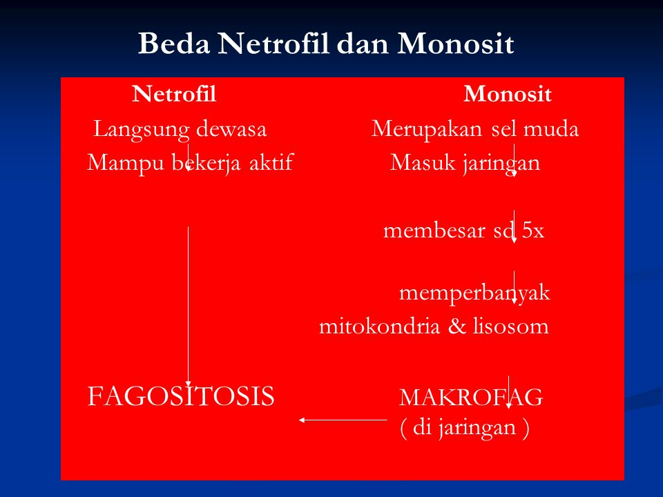 Beda Netrofil dan Monosit