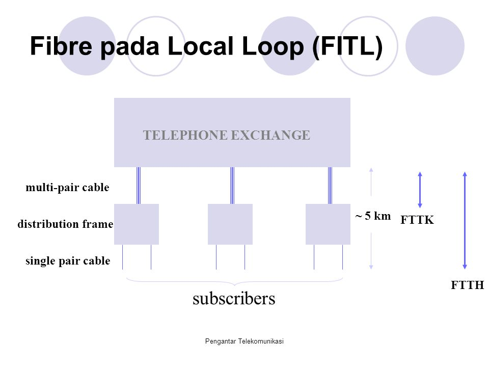 Fibre pada Local Loop (FITL)