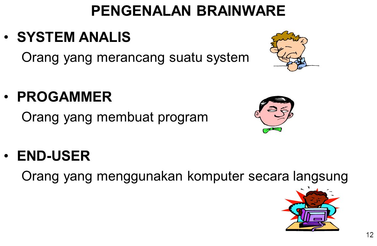 PENGENALAN BRAINWARE SYSTEM ANALIS PROGAMMER END-USER