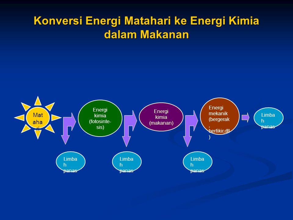 Konversi Energi Matahari ke Energi Kimia dalam Makanan