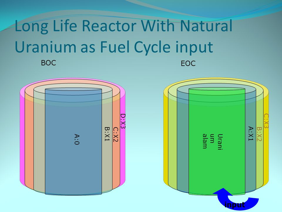 Long Life Reactor With Natural Uranium as Fuel Cycle input