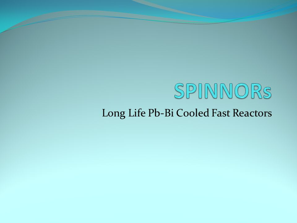 Long Life Pb-Bi Cooled Fast Reactors