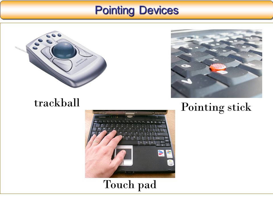 Pointing Devices trackball Pointing stick Touch pad