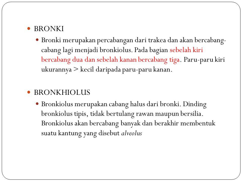 BRONKI