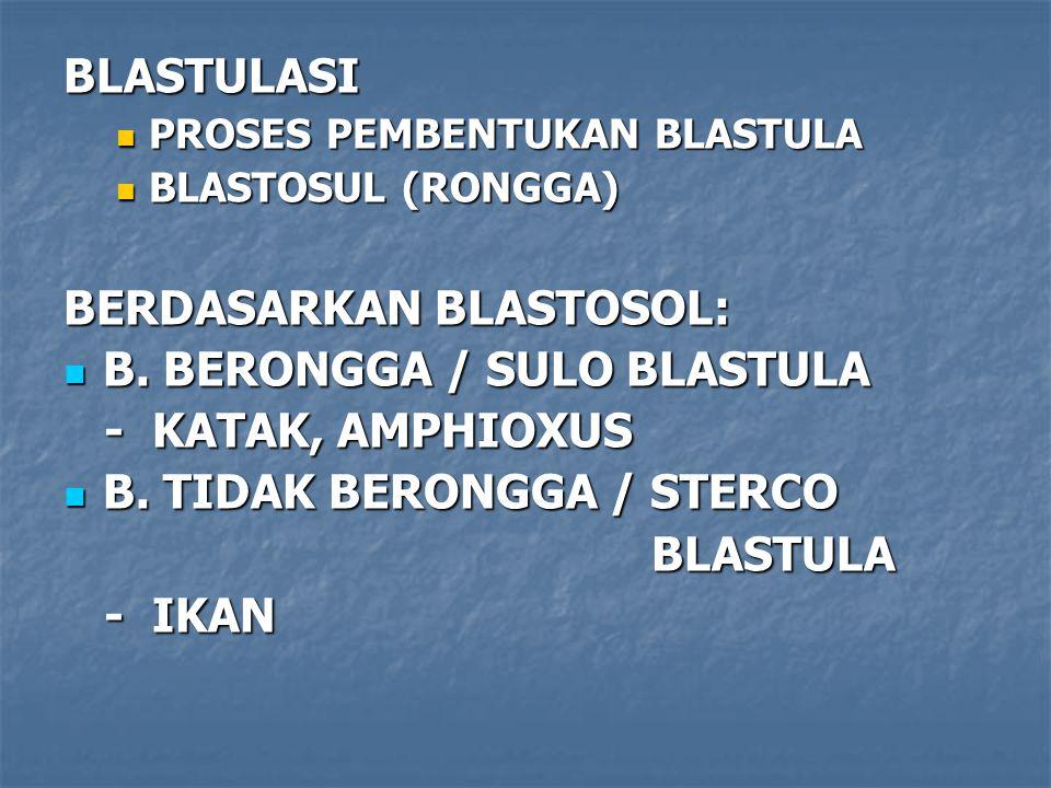 BERDASARKAN BLASTOSOL: B. BERONGGA / SULO BLASTULA - KATAK, AMPHIOXUS