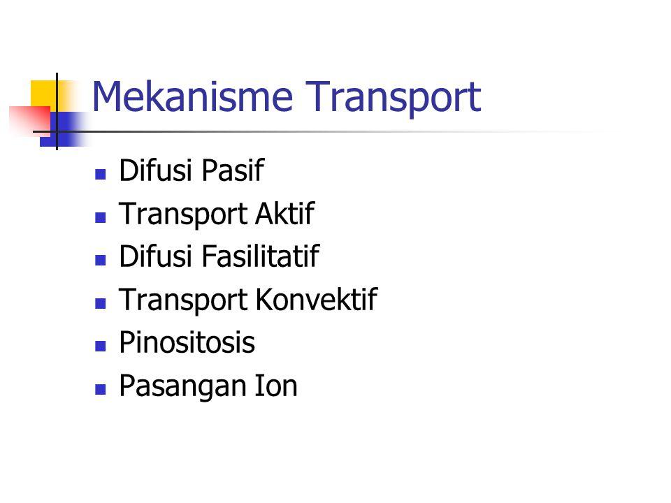 Mekanisme Transport Difusi Pasif Transport Aktif Difusi Fasilitatif