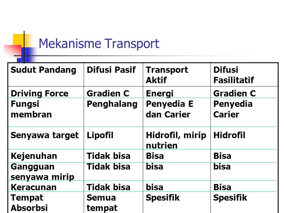 Mekanisme Transport Sudut Pandang Difusi Pasif Transport Aktif