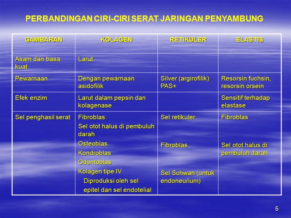 PERBANDINGAN CIRI-CIRI SERAT JARINGAN PENYAMBUNG