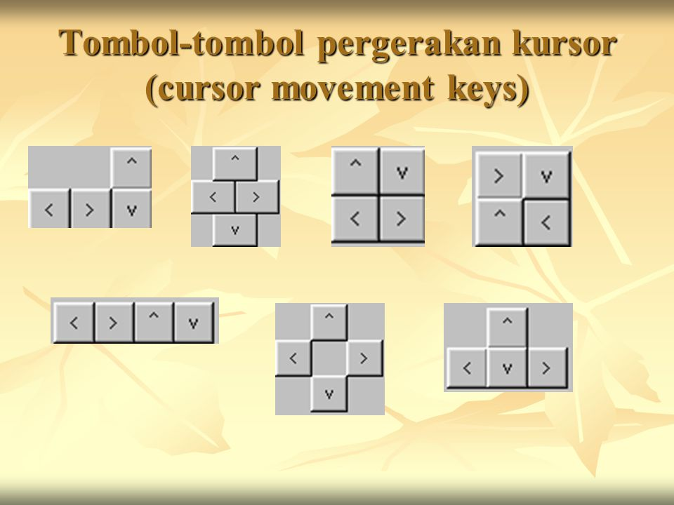 Tombol-tombol pergerakan kursor (cursor movement keys)