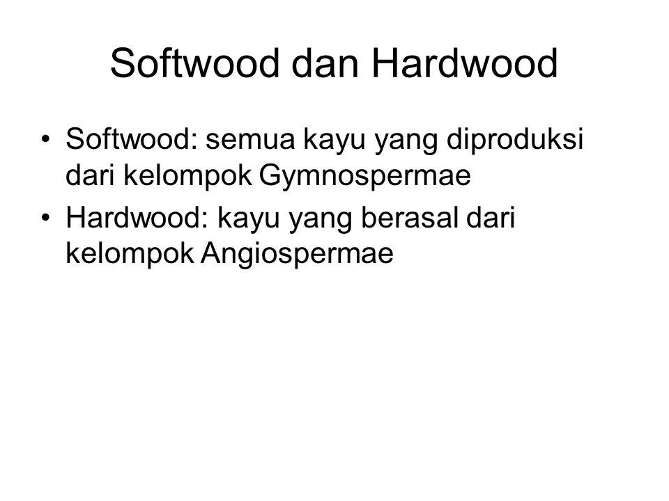 Softwood dan Hardwood Softwood: semua kayu yang diproduksi dari kelompok Gymnospermae.