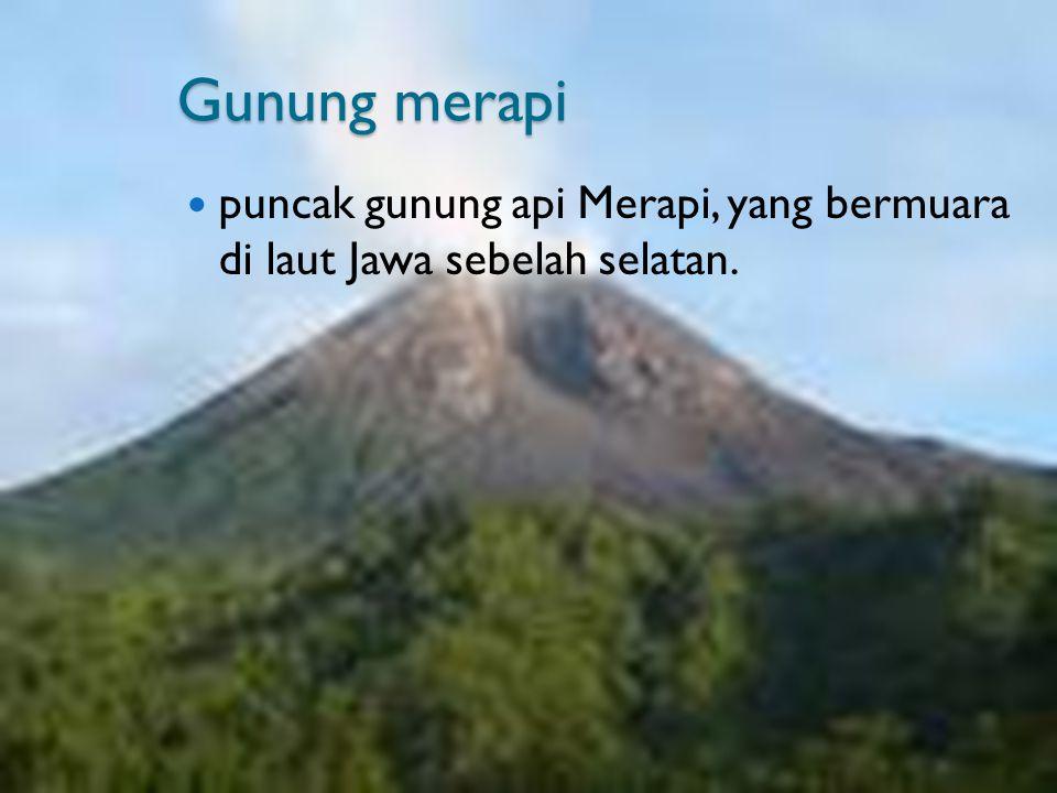 Gunung merapi puncak gunung api Merapi, yang bermuara di laut Jawa sebelah selatan.