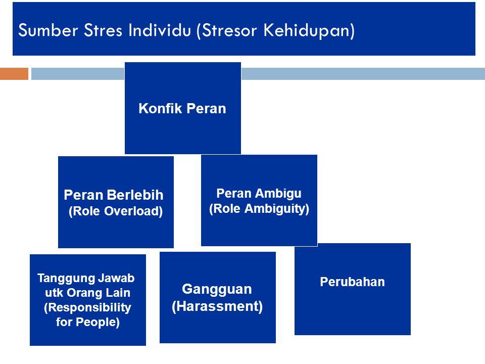 Sumber Stres Individu (Stresor Kehidupan)