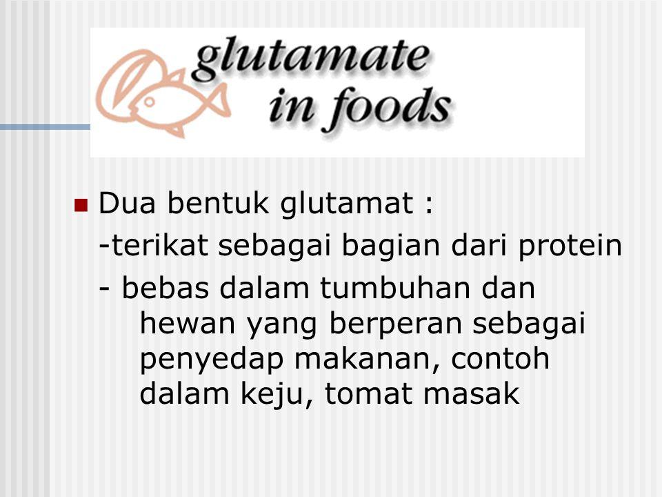 Dua bentuk glutamat : -terikat sebagai bagian dari protein.