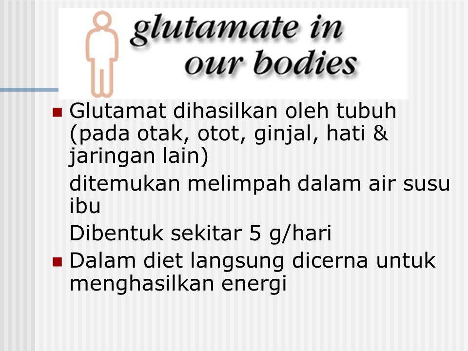 Glutamat dihasilkan oleh tubuh (pada otak, otot, ginjal, hati & jaringan lain)