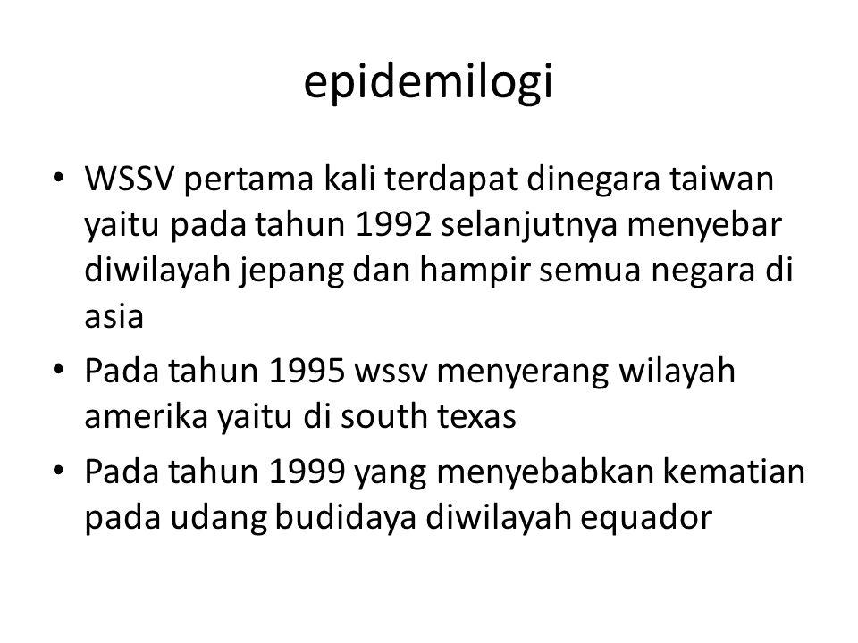 epidemilogi WSSV pertama kali terdapat dinegara taiwan yaitu pada tahun 1992 selanjutnya menyebar diwilayah jepang dan hampir semua negara di asia.