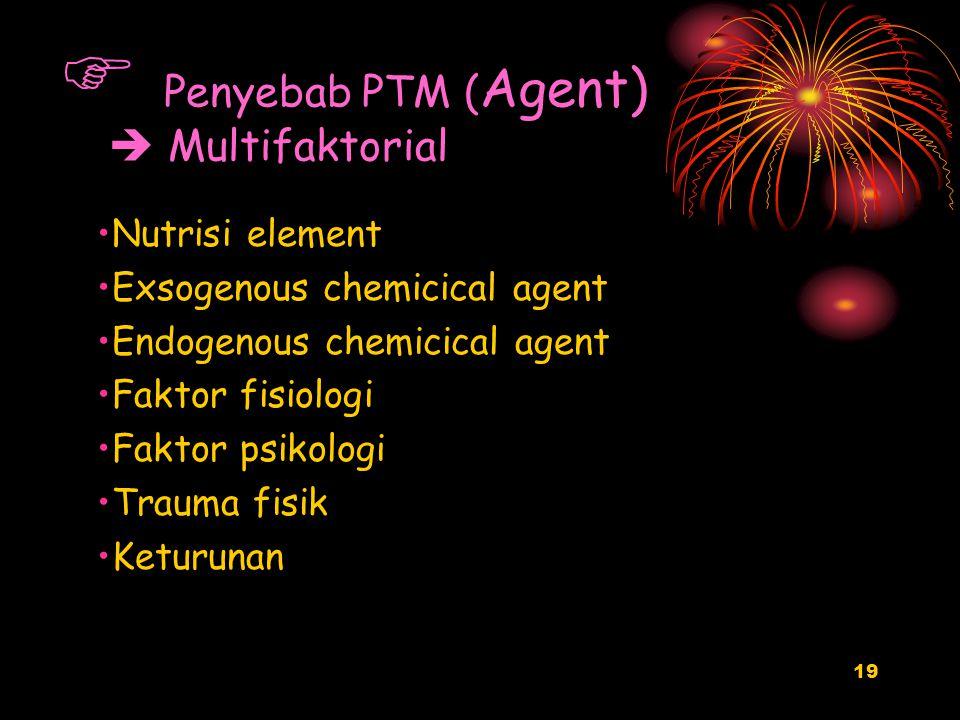 Penyebab PTM (Agent)  Multifaktorial