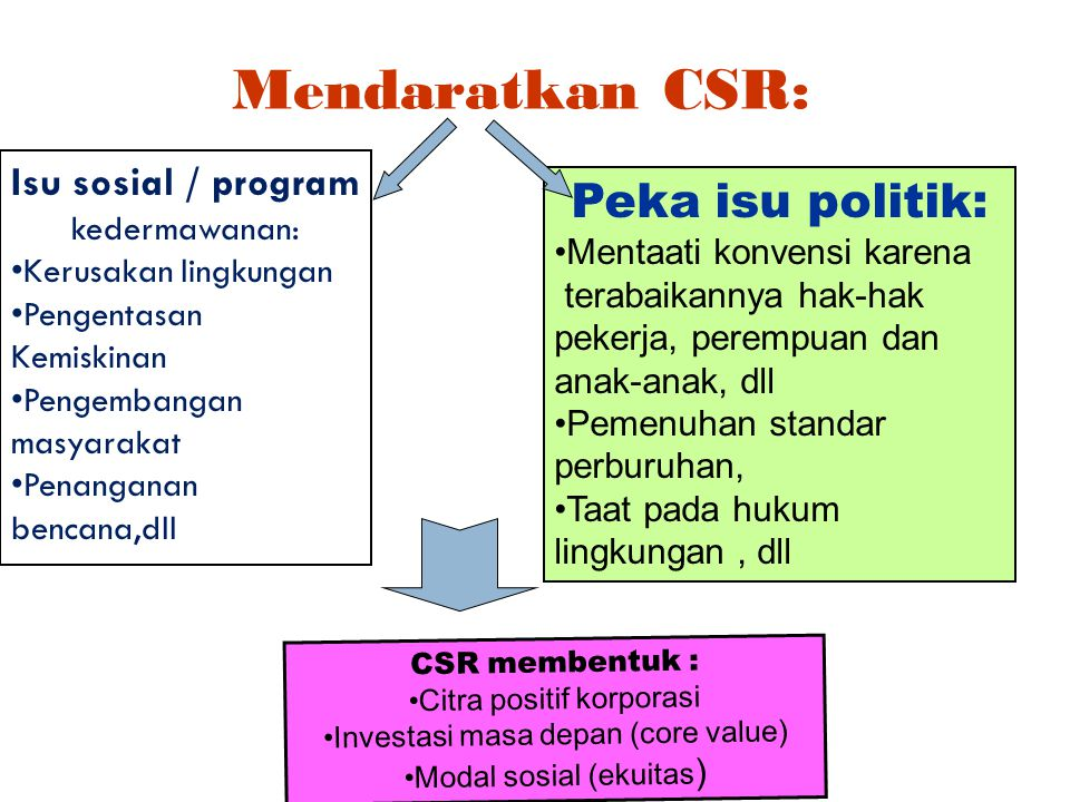 Peka isu politik: Mendaratkan CSR: Isu sosial / program kedermawanan: