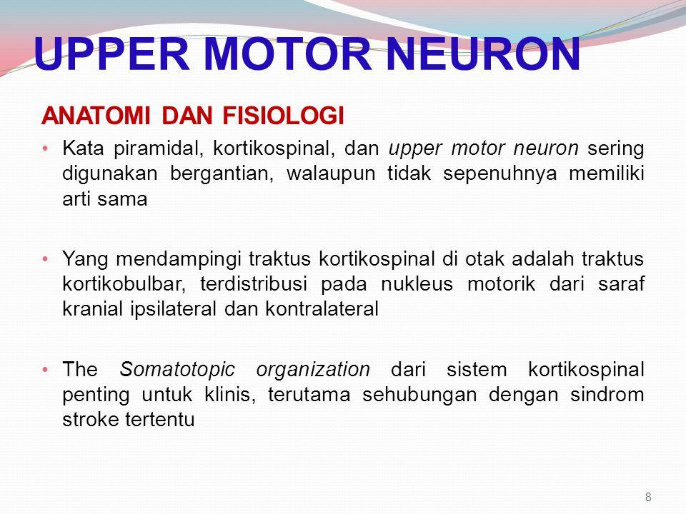 UPPER MOTOR NEURON ANATOMI DAN FISIOLOGI