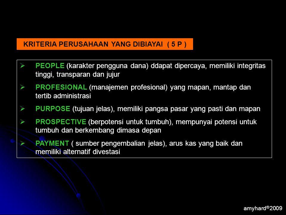 KRITERIA PERUSAHAAN YANG DIBIAYAI ( 5 P )