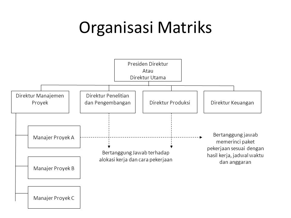 Organisasi Matriks Presiden Direktur Atau Direktur Utama