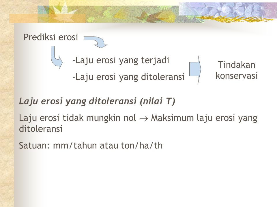 Prediksi erosi Laju erosi yang terjadi. Laju erosi yang ditoleransi. Tindakan konservasi. Laju erosi yang ditoleransi (nilai T)