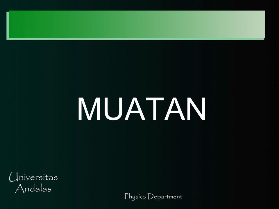 MUATAN