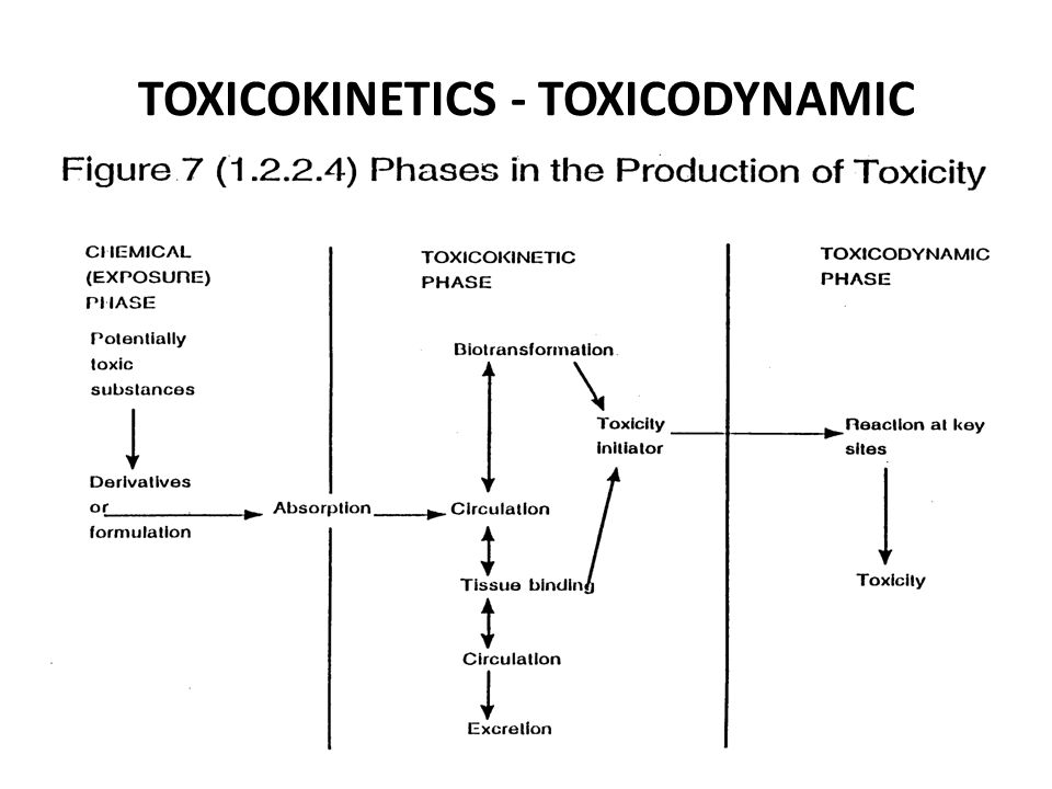 TOXICOKINETICS - TOXICODYNAMIC