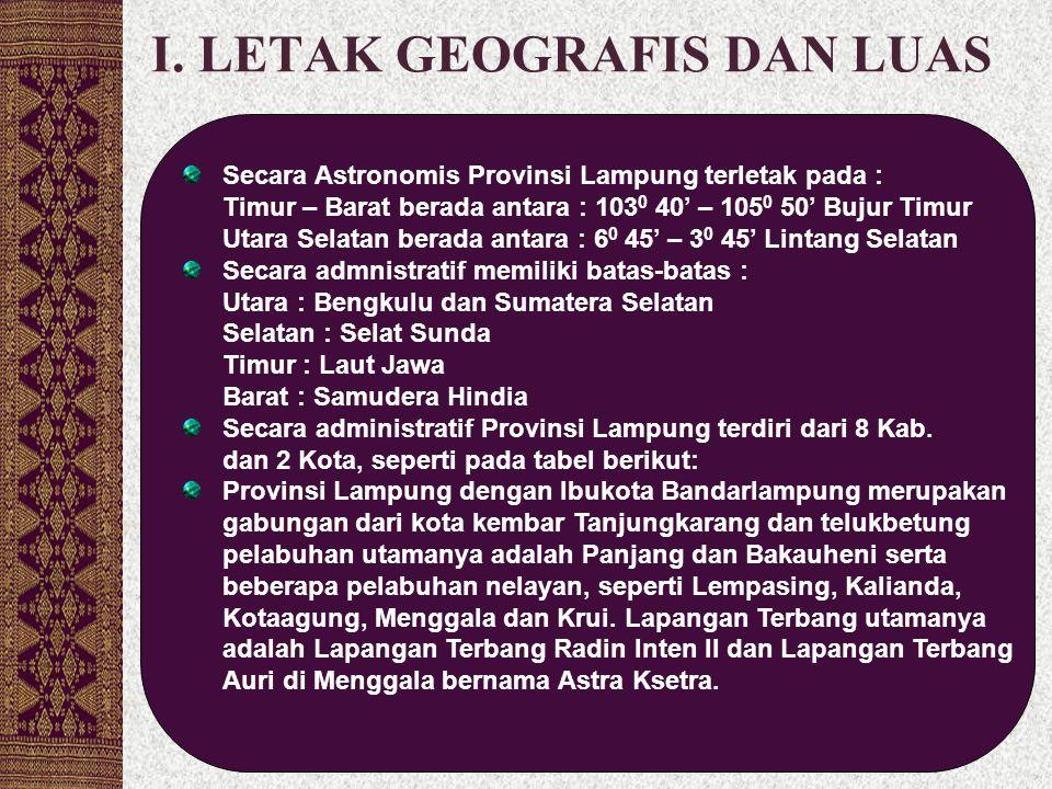 I. LETAK GEOGRAFIS DAN LUAS