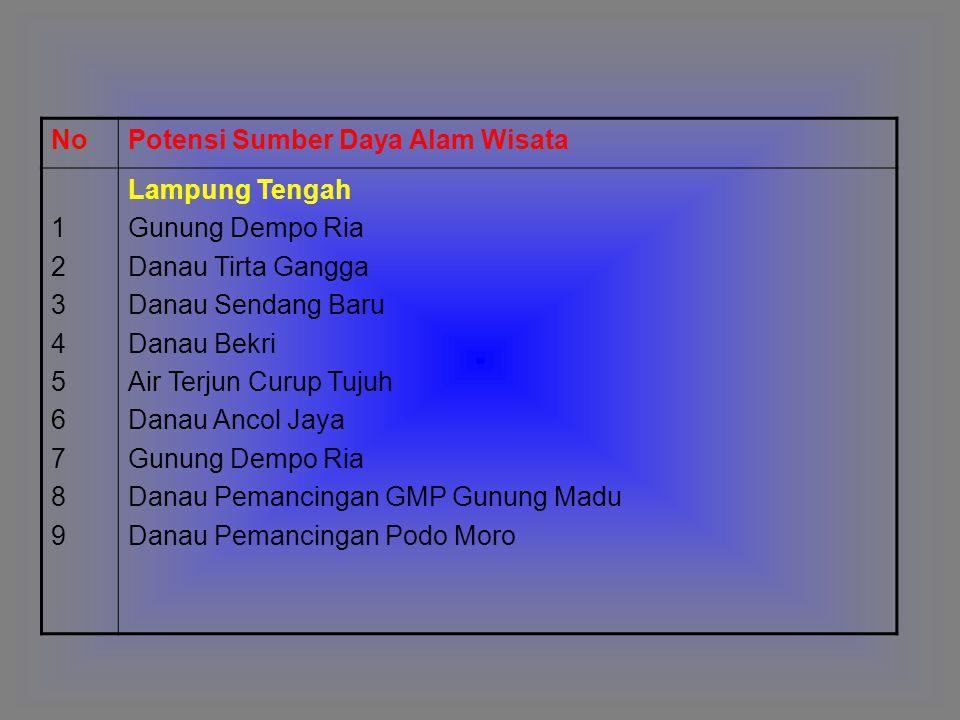 No Potensi Sumber Daya Alam Wisata. 1. 2. 3. 4. 5. 6. 7. 8. 9. Lampung Tengah. Gunung Dempo Ria.