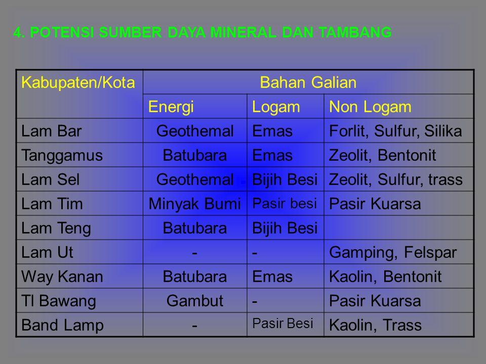 Kabupaten/Kota Bahan Galian Energi Logam Non Logam Lam Bar Geothemal